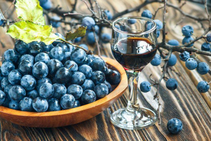 Вино из терна