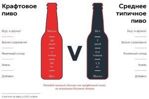 Крафтовое и типичное пиво