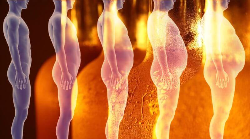 Женский гормон в пиве