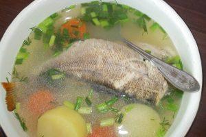 Уха из свежевыловленной рыбы