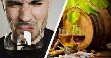 Почему вино превращается в уксус