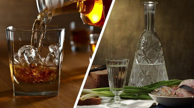 Чем отличается водка от виски