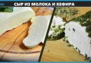 Домашний сыр из молока и кефира