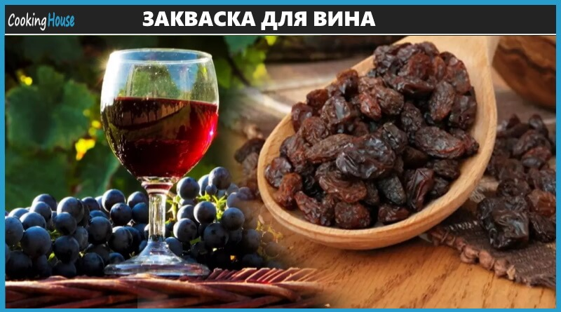 Закваска для вина